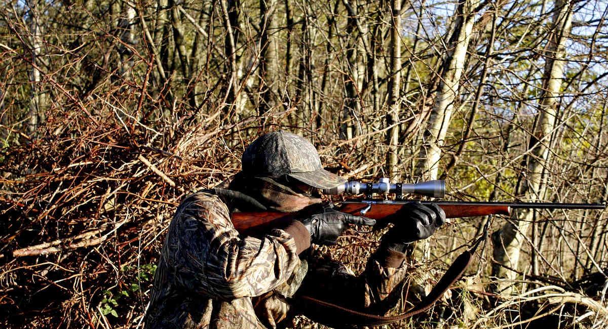 jagd jagdwaffen jagdgebiete